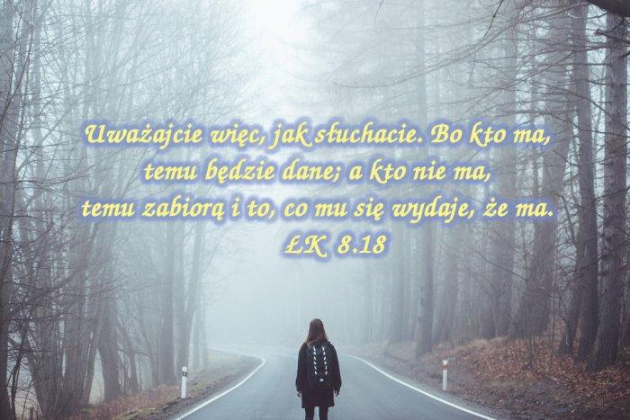 Jezus powiedział do tłumów: