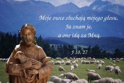 Kto jednak wchodzi przez bramę, jest pasterzem owiec