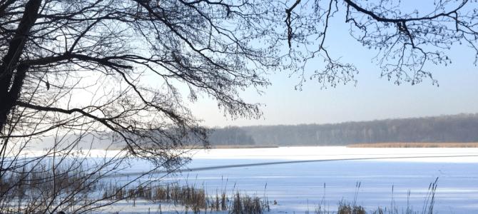 Zimowe zachwyty