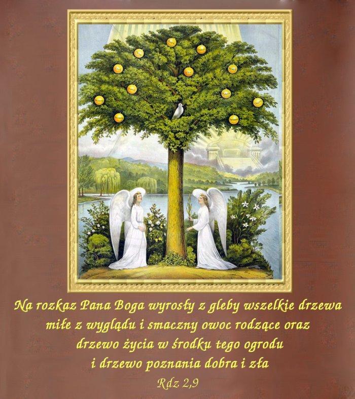 Drzewo życia w środku tego ogrodu…
