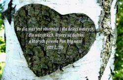 Obietnica Jezusa…
