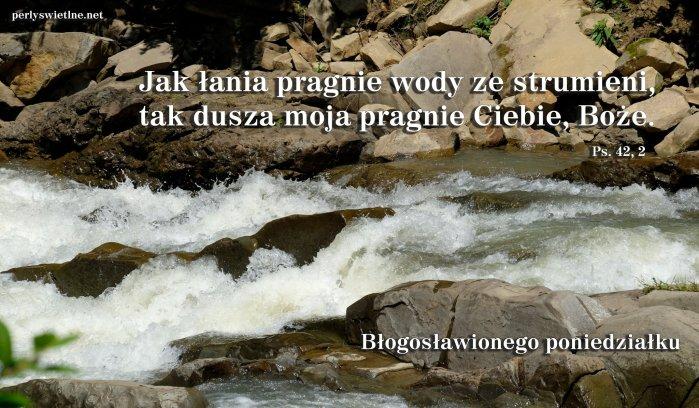 Jak łania pragnie wody ze strumieni…