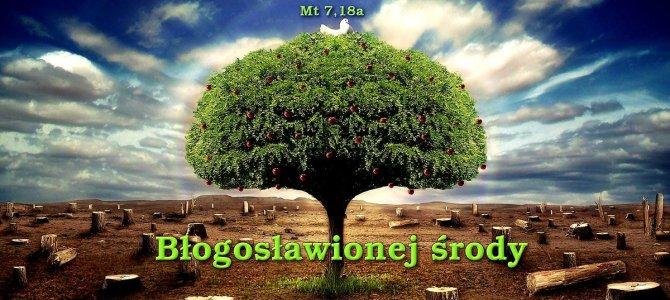 Chcę być dobrym drzewem