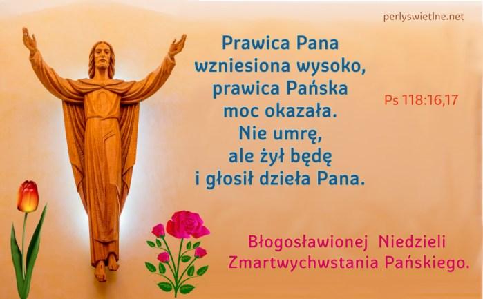 Prawica Pana wzniesiona wysoko, prawica Pańska moc okazała. Nie umrę, ale żył będę i głosił dzieła Pana.