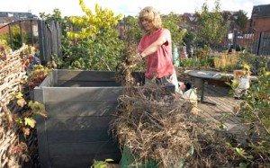 Compost per la fertilità del suolo