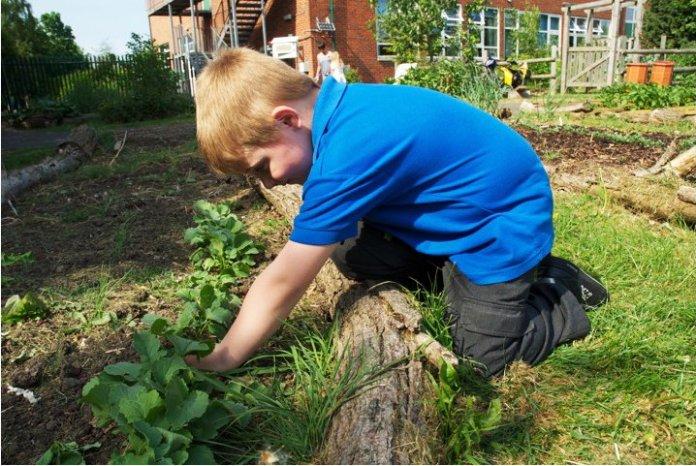 Letto rialzato Permacultura con i bambini
