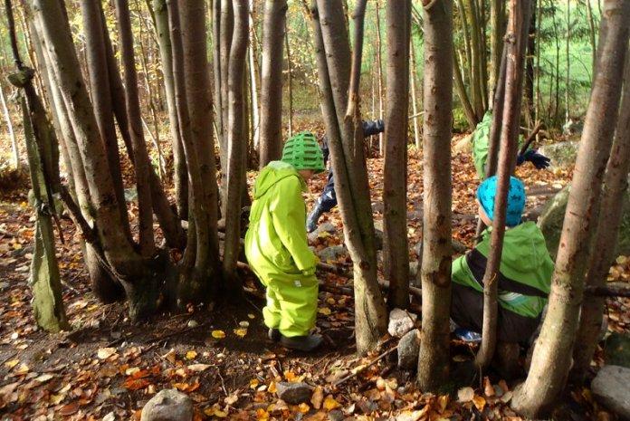 permacultura finlandia bambini foresta