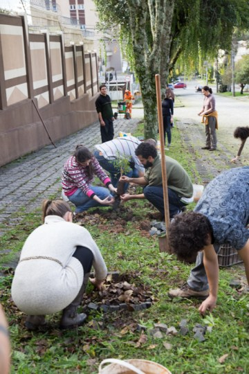 Plantio de mudas na ruas de Curitiba