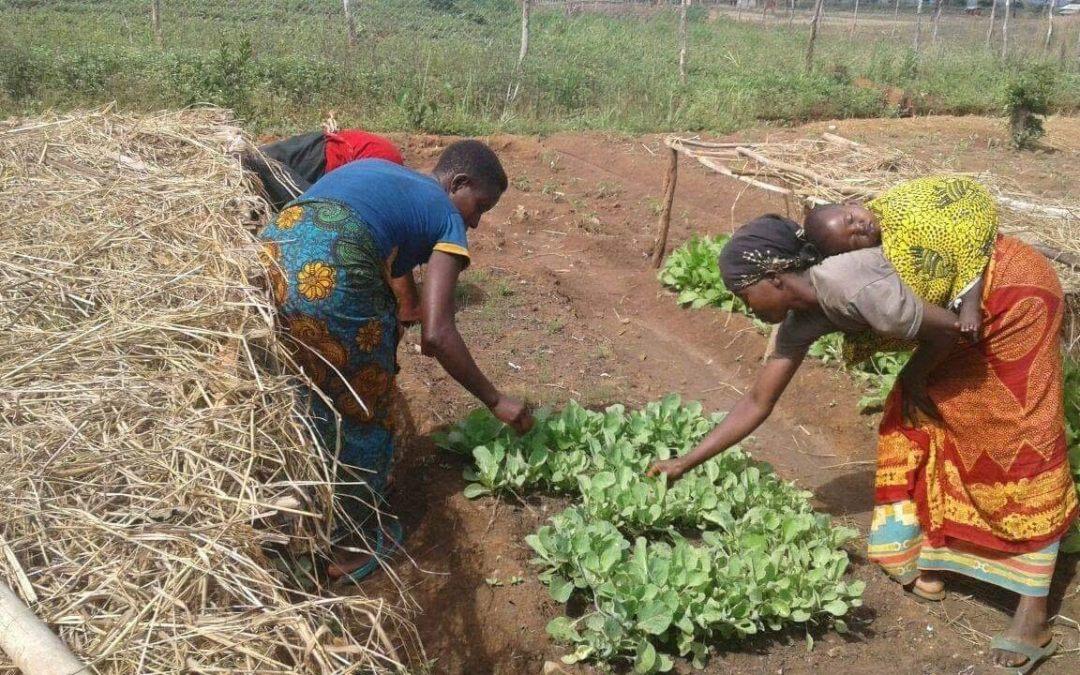 Combating malnutrition in Kakuma Refugee Camp Kenya