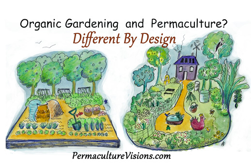 Permaculture Stories – April Sampson-Kelly