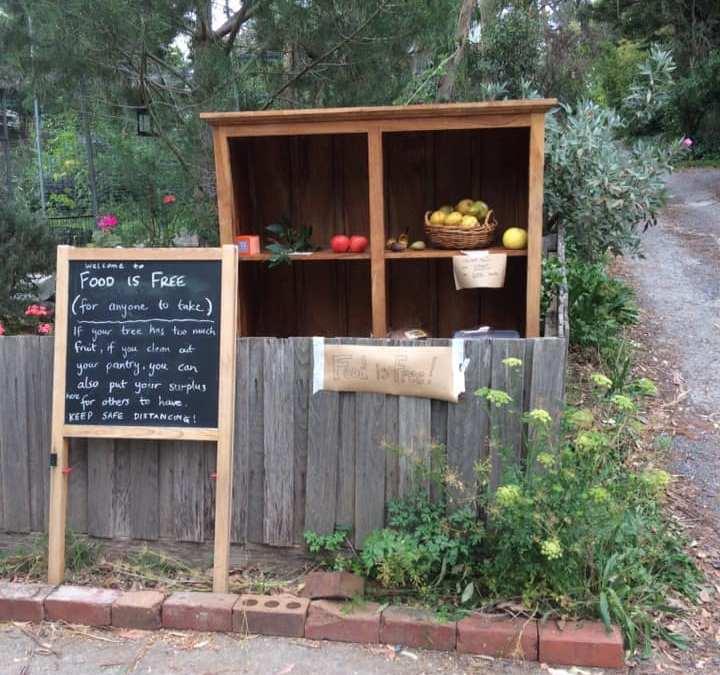 Permaculture Stories – Delldint Megan Fleming