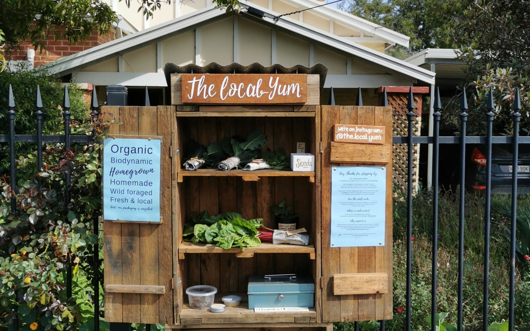 'The Local Yum' – food, community connections & greyhounds