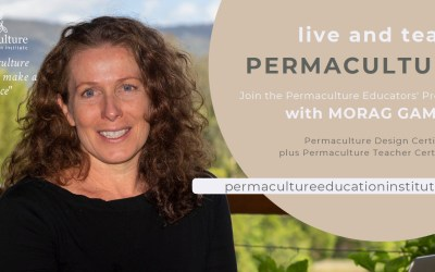 Permaculture study opportunities