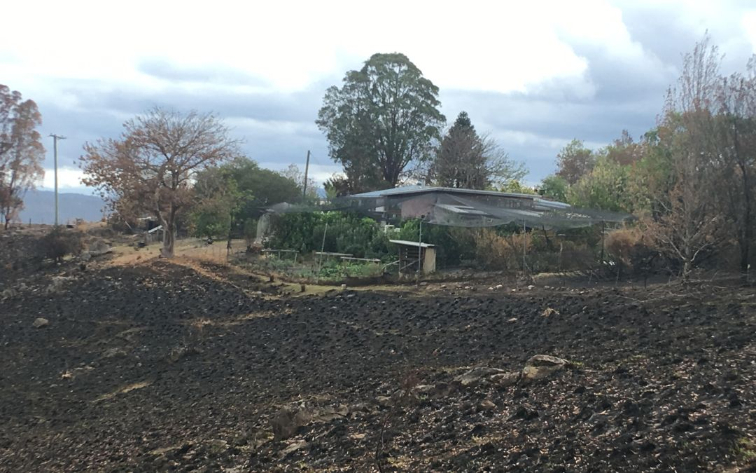 Graduate stories: Designing for disaster & experiences from the bushfires
