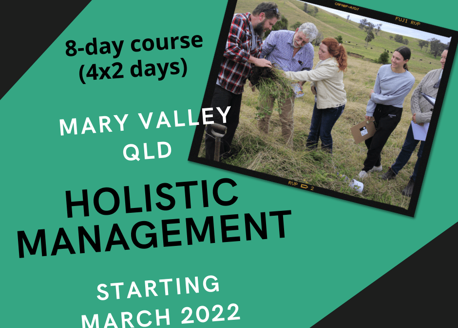MARY VALLEY, QLD HOLISTIC MANAGEMENT COURSE