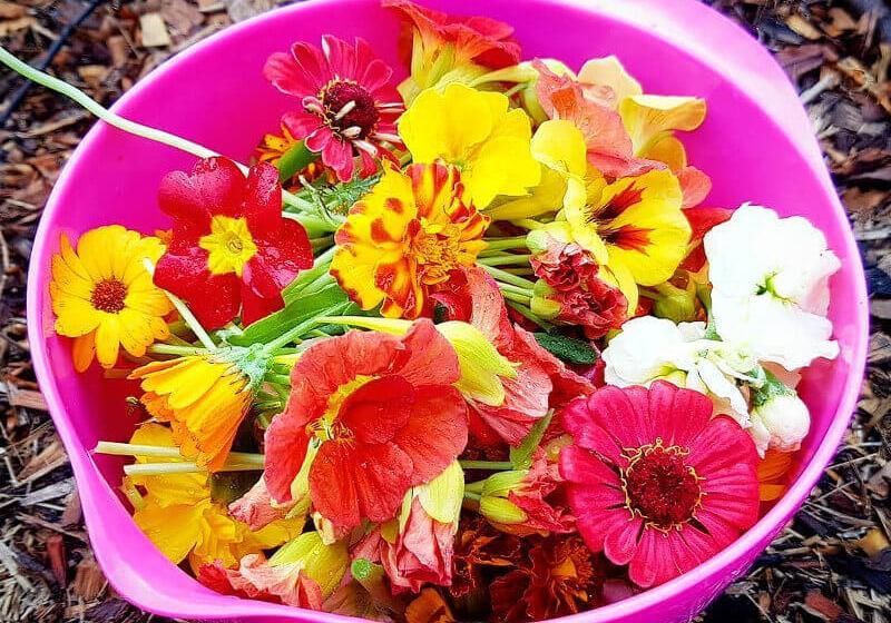 Hidden Valley Harvest edible flowers