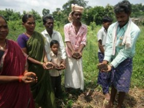 Tribal Permaculture Project