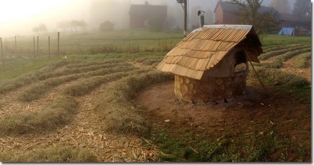 Setting-Permaculture-Farm-39