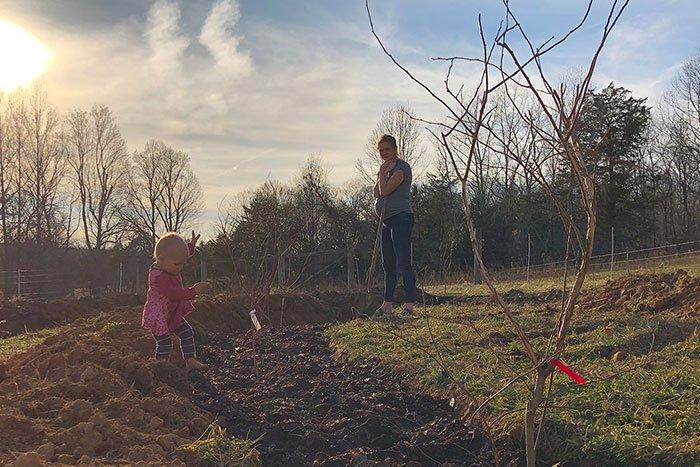 Verbessert den Säuregehalt des Bodens, um die Blaubeerzünfte zu unterstützen