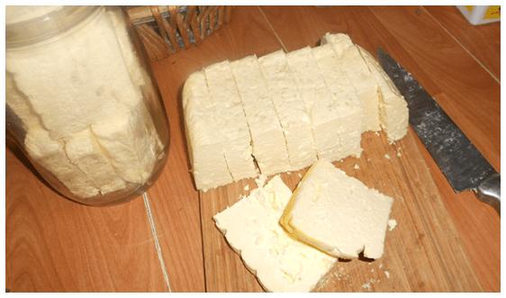 fermented foods seminar