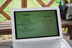 Classification of green and brown
