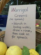 nz_spinach_instructions