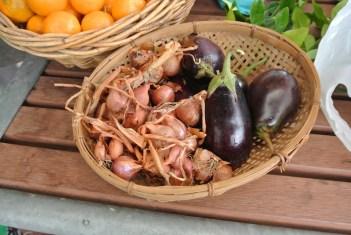 shallots_eggplant