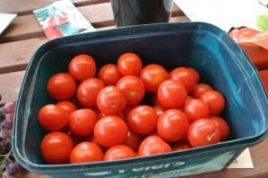 cherry_tomatoes2
