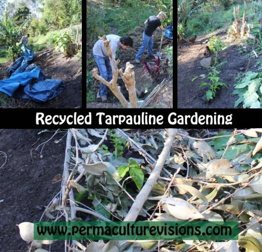 Recycled Tarpauline Gardening