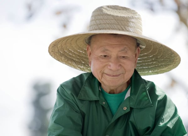 Le Professeur Akira Miyawaki
