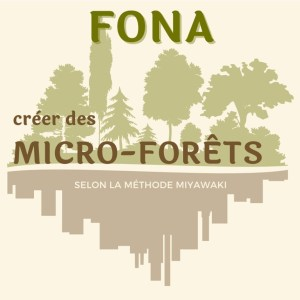 formation miyawaki micro-forêt