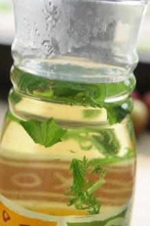 Zieleninę też zaparzam jak herbatę, tutaj pyszny napój miętowo-pokrzywowy z krwawnikiem. Samo zdrowie.