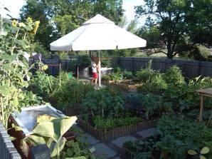 Wspólny Ogród 1