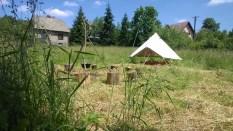 namiot, trójnóg, kociołek i dwanaście pieńków :)