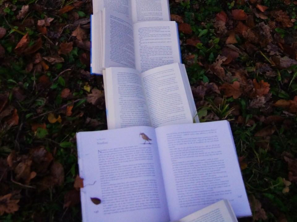 Permakultur Bücher