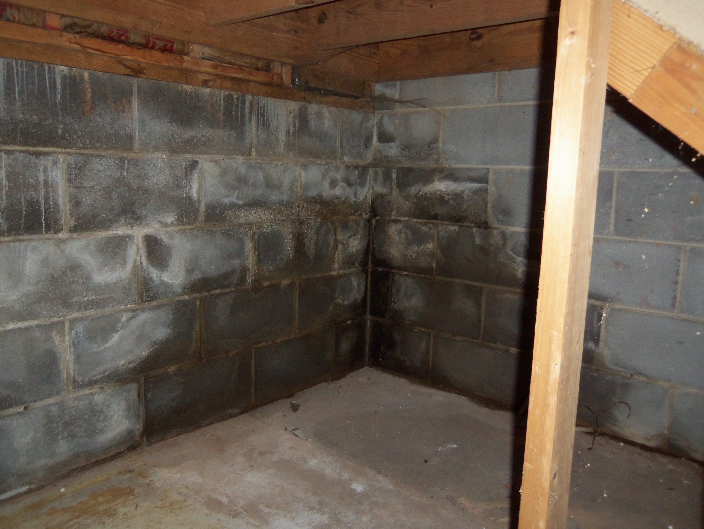 Basement Waterproofing