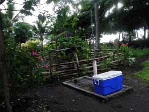 Greywater garden catches shower water