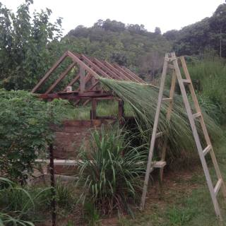 Permaculture Research Institute Sunshine Coast Humanure Bank Vault 1, Thatch Roof