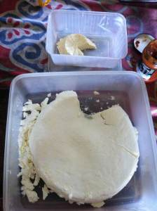 Permaculture on the Sunshine Coast, permaculture Yoghurt cheese making