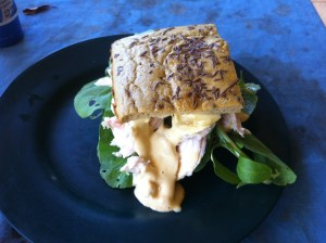 Homemade chicken sandwich on bunya nut loaf, with homegrown rocket and homemade butter and mayonnaise