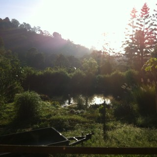 Misty morning over the pond at Maungaraeeda on the Sunshine Coast, Queensland