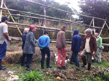 Permaculture Design Certificate course PDC course Day 2, staple carbs area pumpkin climbing frame at Maungaraeeda