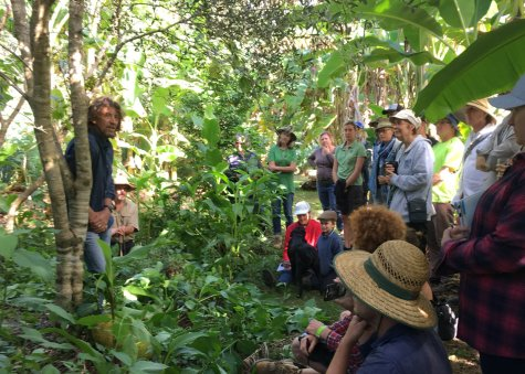 Geoff Lawton's food forest talk at CelebrATE!