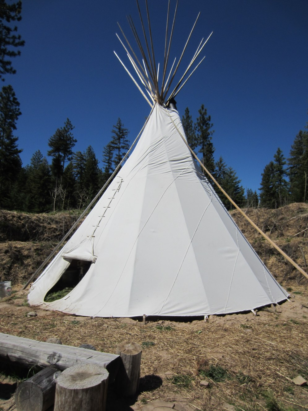 Private woodland surrounds the tipi