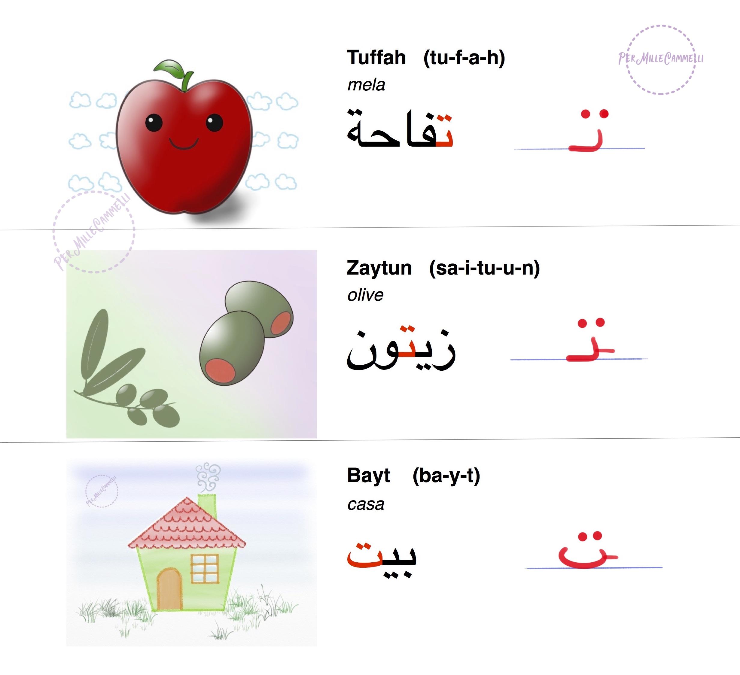 parole e disegni con lettera Taa arabo
