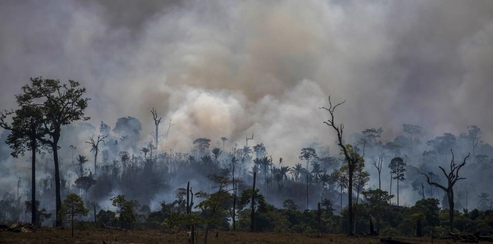 Governo Federal proíbe queimadas em todo Brasil em período de seca