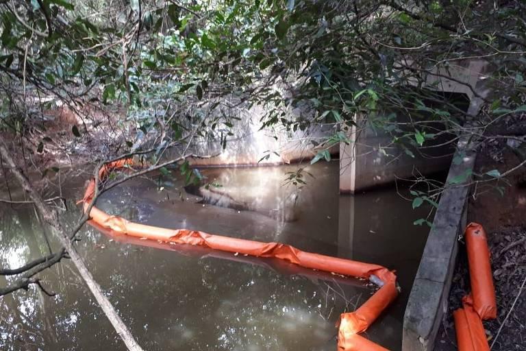 Refinaria de Abreu e Lima vaza óleo para manguezal do Grande Recife