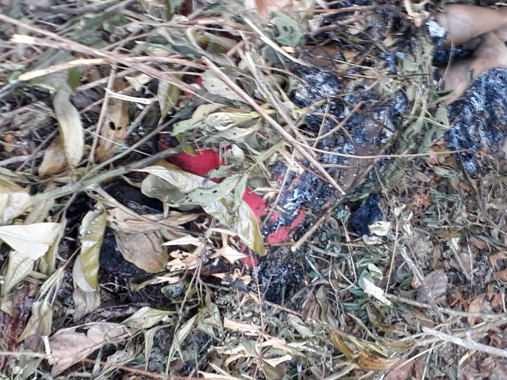 Homem mata e queima namorado no interior de Pernambuco