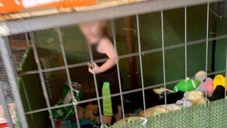 Criança é encontrada presa em jaula perto de cobras