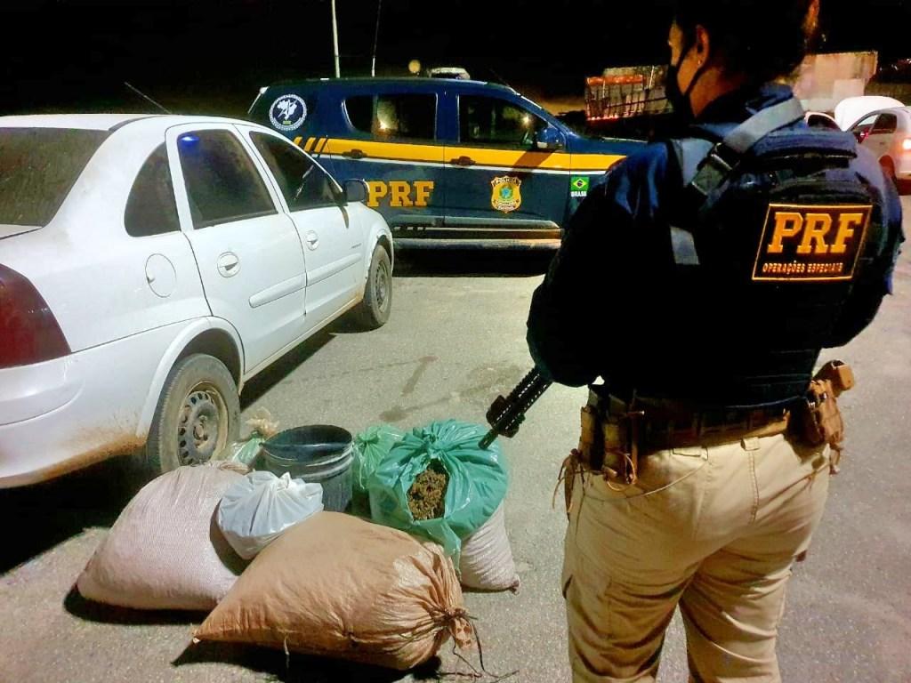 PRF detém 35 pessoas e apreende mais de meia tonelada de drogas em PE, BA e AL